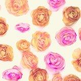 Plakfolie rozen brocant (45cm)_