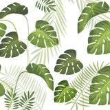 Statisch raamfolie Palm leafs (46cm)_