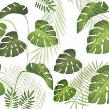 Statisch raamfolie Palm leafs (46cm) (uiterlijk 16/12 verwacht!)