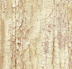 Plakfolie tree shell (45cm)